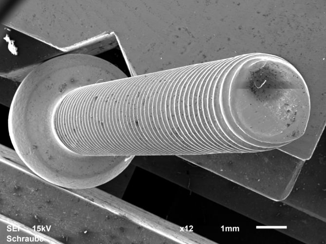 Electron microscope image of a 33-mm long screw